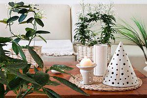 gr npflanzen im wohnbereich pflegetipps f r zimmerpflanzen. Black Bedroom Furniture Sets. Home Design Ideas